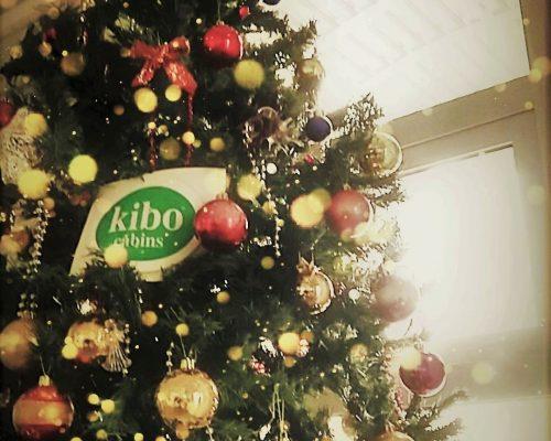 Σας ευχόμαστε από καρδιάς, Καλά Χριστούγεννα και Καλή Πρωτοχρονιά!